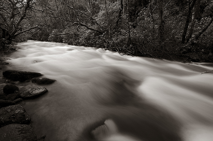 Sepia_River_1_small