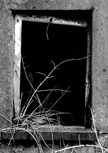 Abandonment Part 3_1 B&W_small